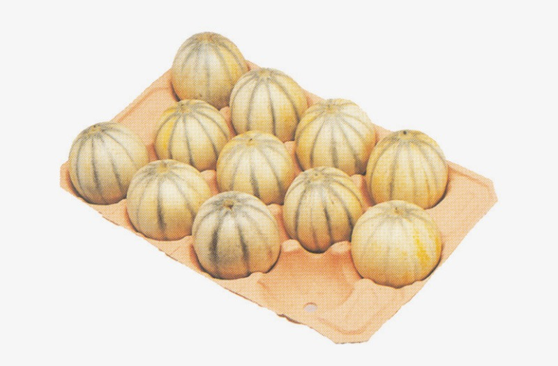 Cellulose-moulé-melon