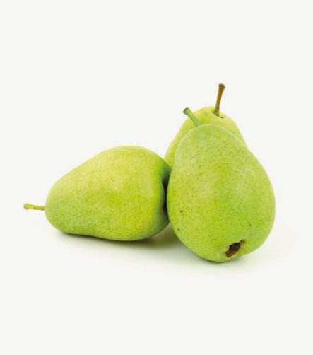 Alvéole fruit rond