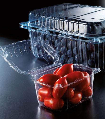 barquette plastique tomate
