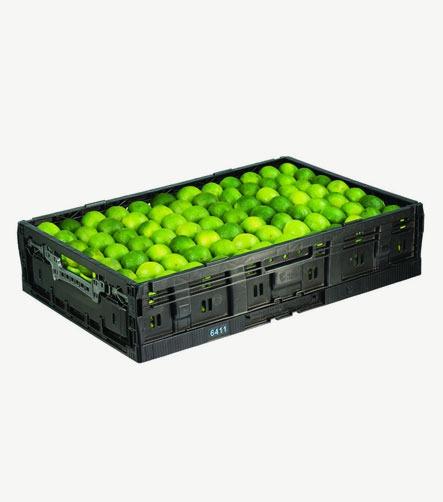 Bac plastique fruit