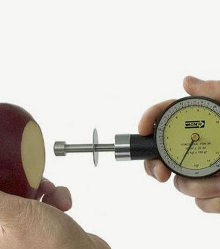 pénétromètre manuel pour fruits