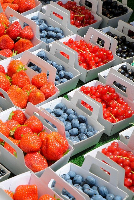 packaging carton fruit